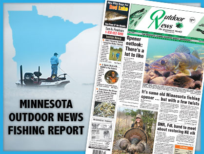 MN-State-report-header